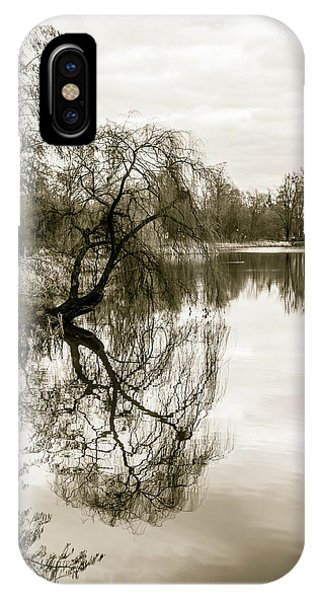 Weeping Willow Tree In The Winter IPhone Case