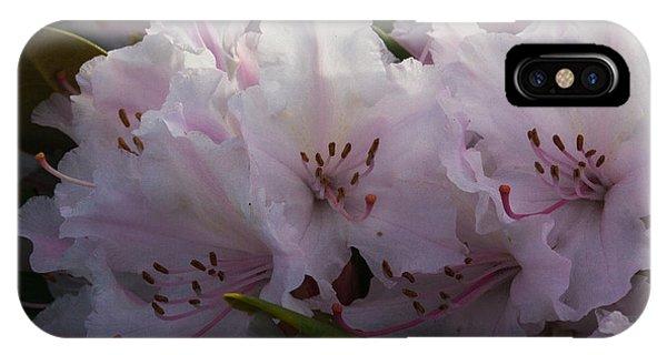 Weigela Blossom IPhone Case