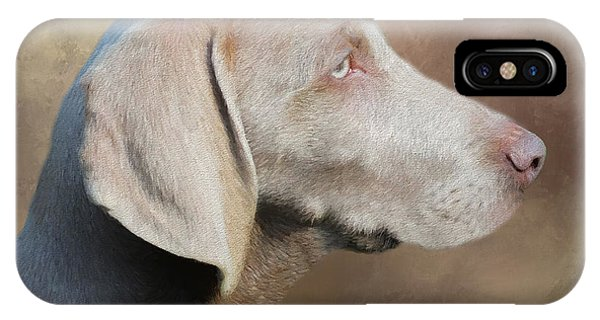Weimaraner Adult - Painting IPhone Case