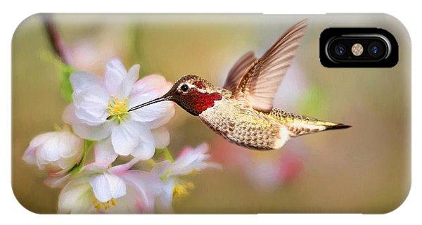 Beautiful Hummingbird iPhone Case - Welcome Spring by Darren Fisher