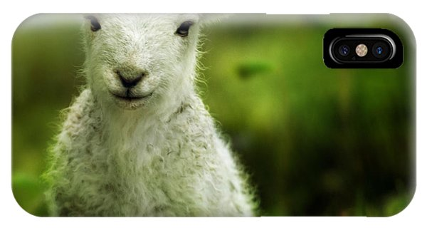 Sheep iPhone X / XS Case - Welsh Lamb by Angel Ciesniarska