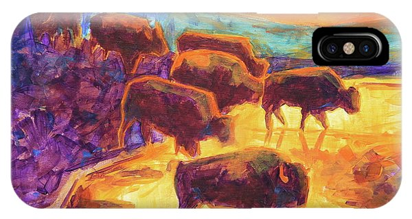 Western Buffalo Art Bison Creek Sunset Reflections Painting T Bertram Poole IPhone Case
