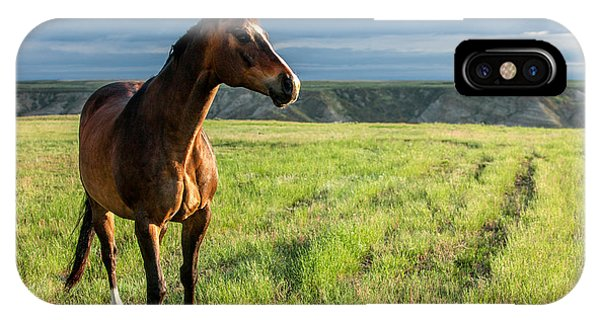 Horse iPhone Case - Western Stallion by Todd Klassy