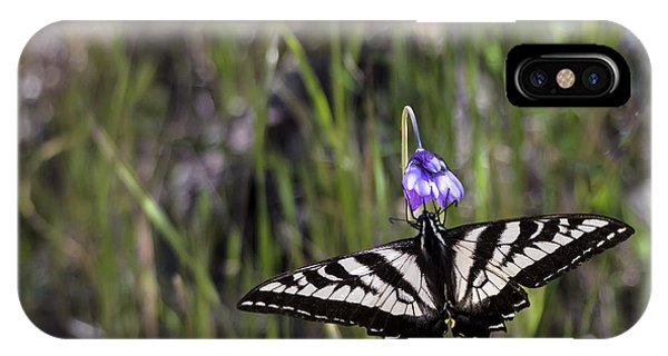 Western Tiger Swallowtail IPhone Case