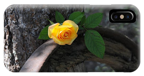 Western Yellow Rose II IPhone Case