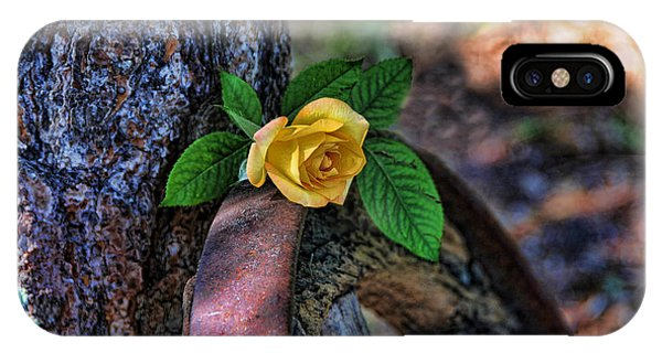 Western Yellow Rose Viii IPhone Case