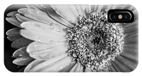 IPhone Case featuring the photograph Wet Daisy In Monochrome by SR Green