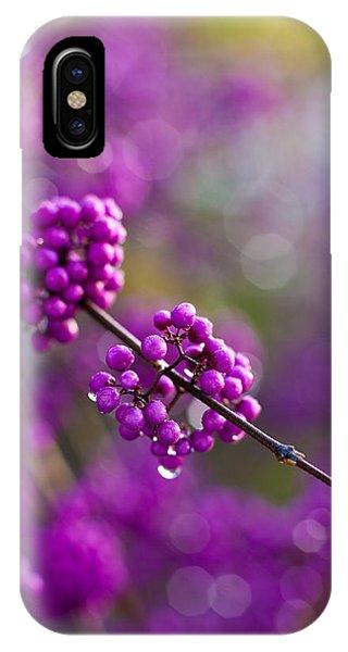 Fall Flowers iPhone Case - Wet Purple 2 by Mike Reid