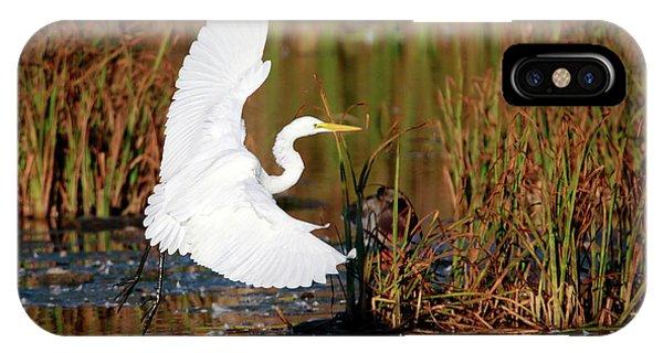 Wetland Landing IPhone Case