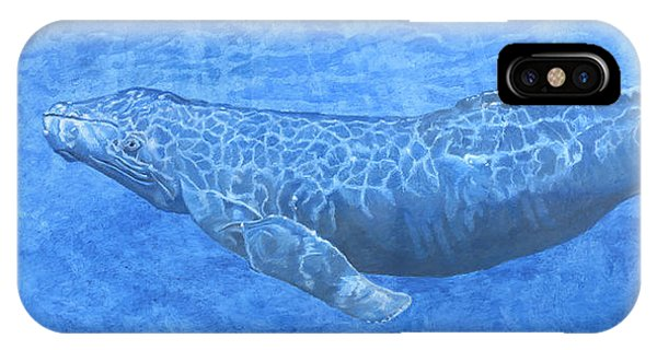 Whale In Surface Light IPhone Case