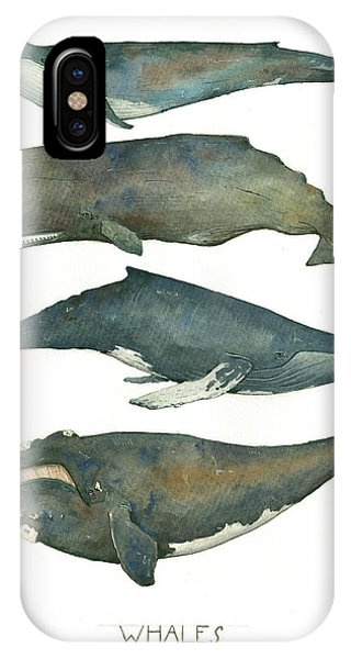 Whale iPhone Case - Whales Poster by Juan Bosco