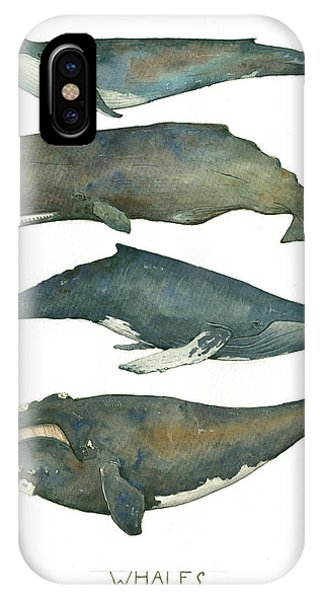 Whales iPhone Case - Whales Poster by Juan Bosco