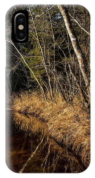 Wharton Forest Fall IPhone Case