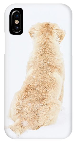 What Do You See? IPhone Case