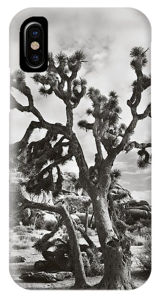 Desert iPhone Case - What I Wouldn't Give Bw by Laurie Search