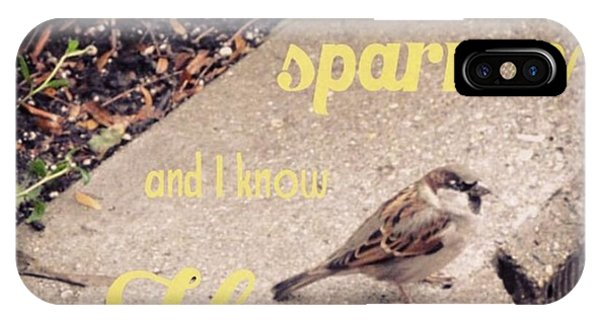 Design iPhone Case - What Is The Price Of Two Sparrows-one by LIFT Women's Ministry designs --by Julie Hurttgam