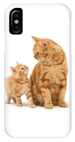 IPhone Case featuring the photograph What's For Dinner, Mum by Warren Photographic