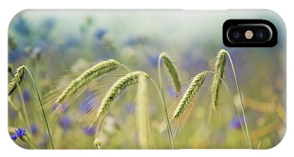 Growth iPhone Case - Wheat And Corn Flowers by Nailia Schwarz