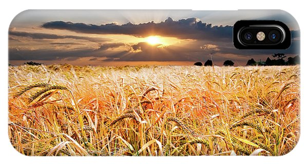 Sunset iPhone Case - Wheat At Sunset by Meirion Matthias