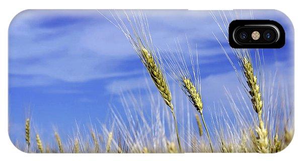 Wheat Trio IPhone Case