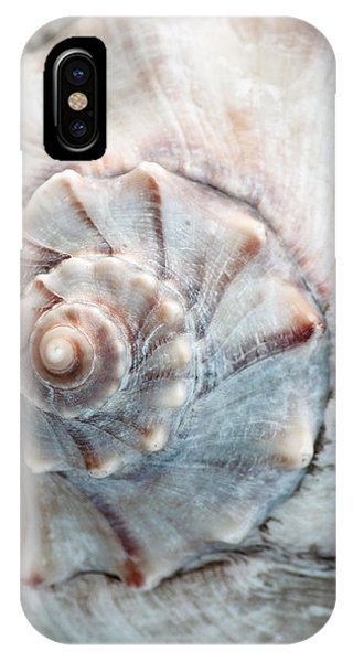 Whelk IPhone Case