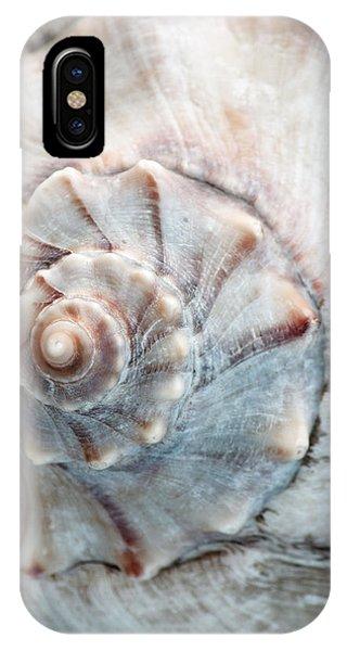 Whelk IPhone Case