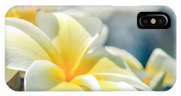 Where Happy Spirits Dwell - Cearnach IPhone Case
