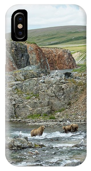 IPhone Case featuring the photograph Where The Bears Are  by Cheryl Strahl