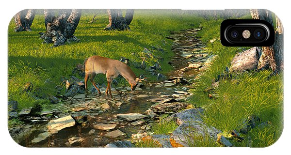 Where The Buck Stops IPhone Case