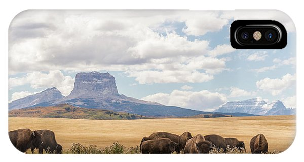 Where The Buffalo Roam IPhone Case