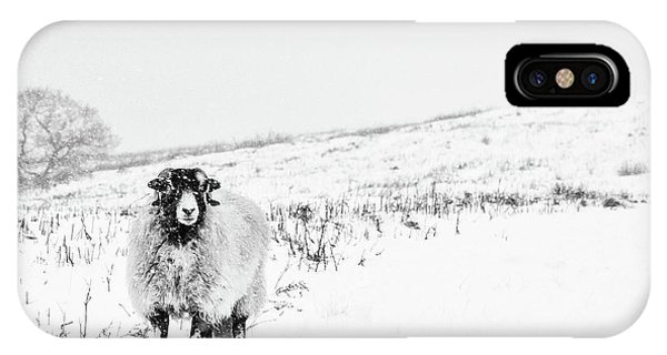 Farm iPhone Case - Which Way Is South? by Janet Burdon