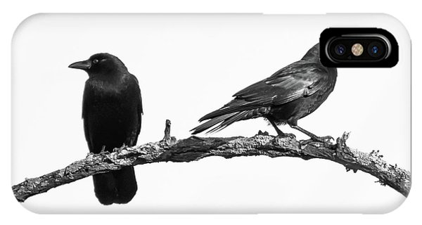 Which Way Two Black Crows On White Square IPhone Case