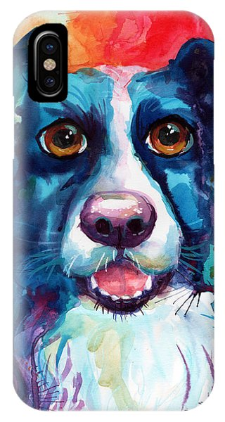 iPhone Case - Whimsical Border Collie Dog Portrait by Svetlana Novikova