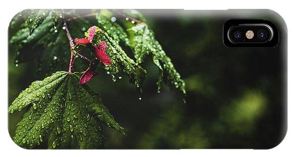Whirlygig IPhone Case