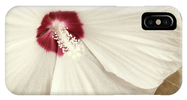 Hibiscus Flower iPhone Case - Whispering Hibiscus by Mindy Sommers