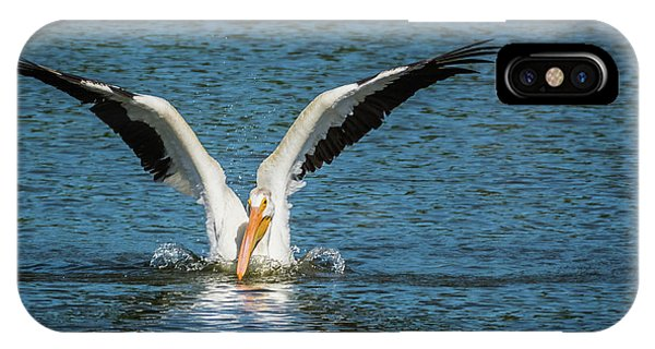 White American Pelican IPhone Case