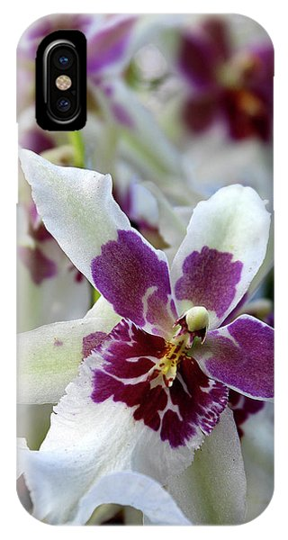 Purple And White Orchid IPhone Case