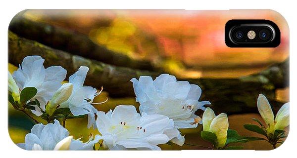 White Azaleas In The Garden IPhone Case