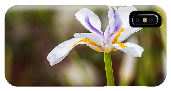 White Beardless Iris IPhone Case