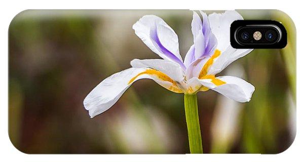 White Beardless Iris IPhone Case