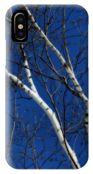 White Birch Blue Sky IPhone Case