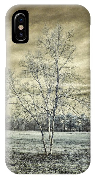 White Birch In Cantiague Park IPhone Case