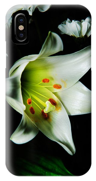 White Blooming Lily IPhone Case