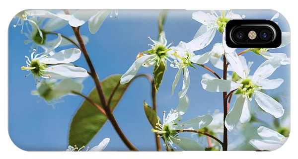 IPhone Case featuring the photograph White Blossom by Cristina Stefan