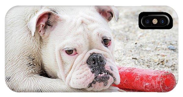 White Bull Dog IPhone Case
