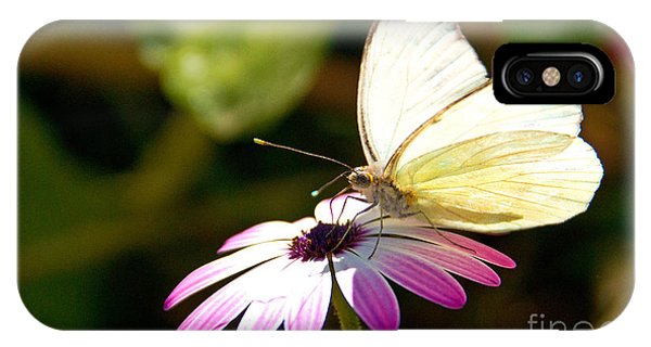 iPhone Case - White Butterfly by Kelly Holm