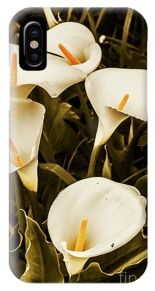 Garden Wall iPhone Case - White Calla Lilies by Jorgo Photography - Wall Art Gallery