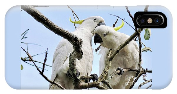 White Cockatoos IPhone Case