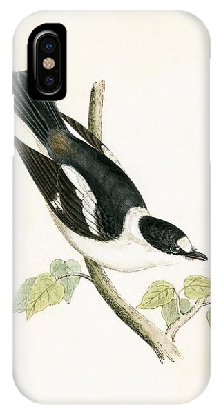 White Collared Flycatcher IPhone Case