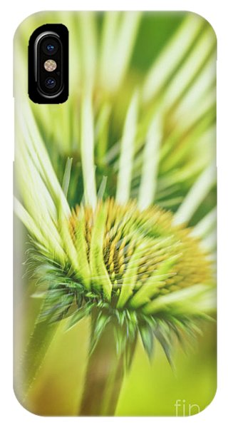 White Coneflower IPhone Case